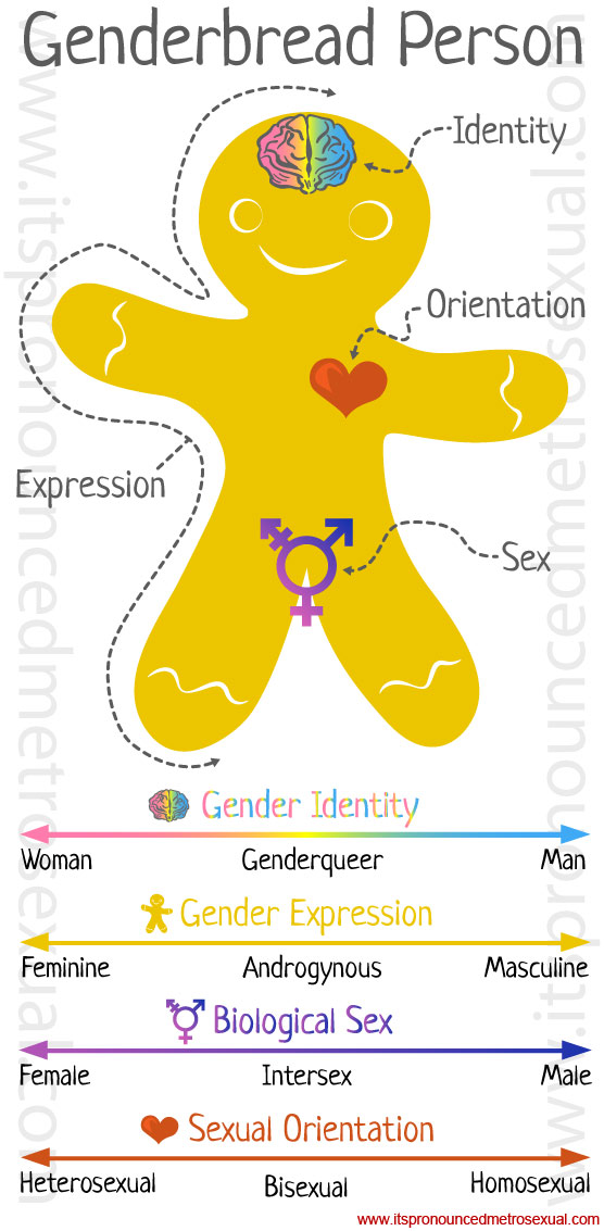 Sex gender sexuality definitions