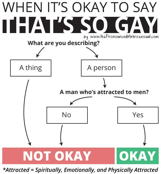 When It's Okay to Say Gay Flowchart