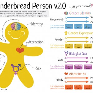 The Genderbread Person v2.1