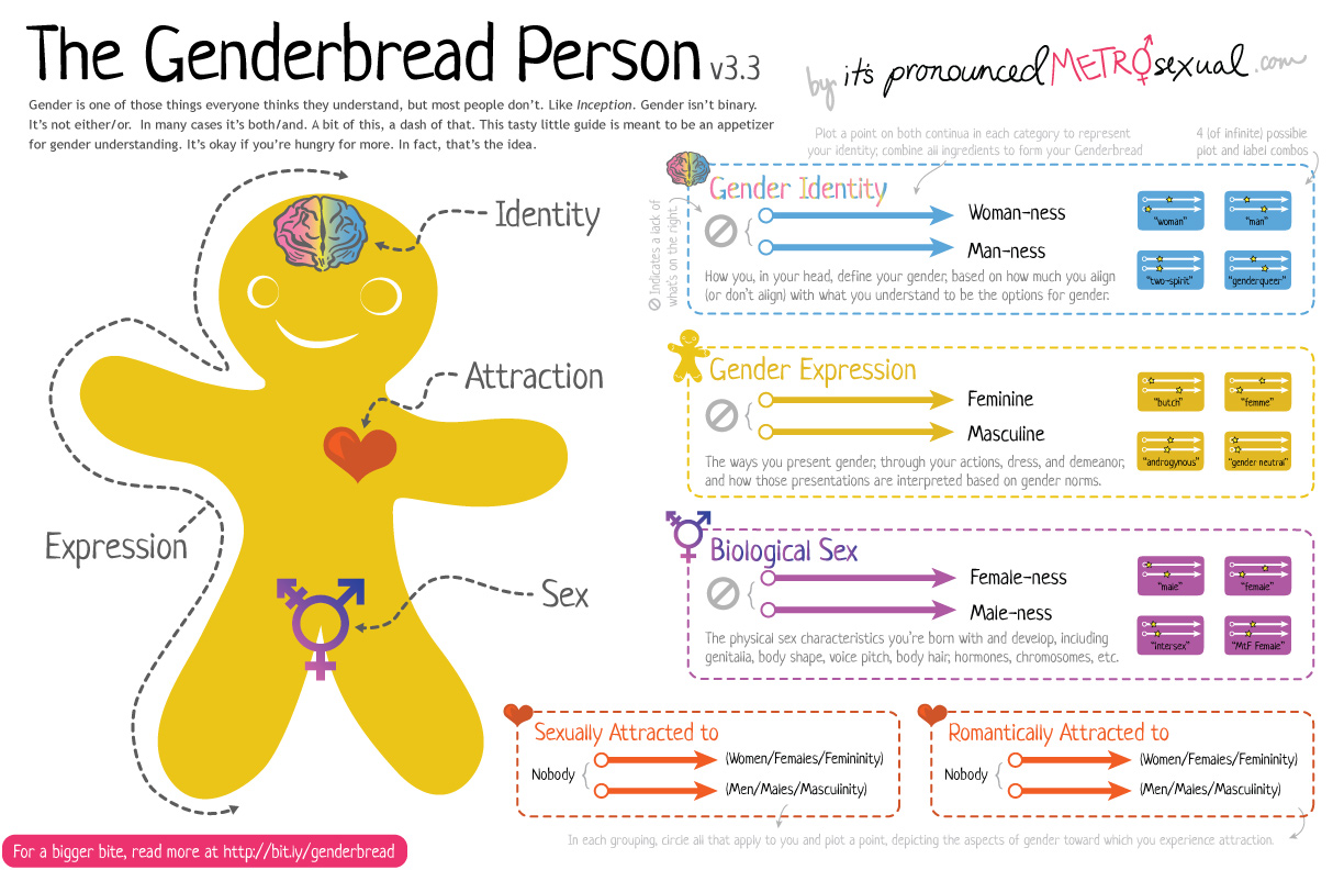 The Genderbread Person version 3 - ❤ It's Pronounced Metrosexual