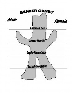 gender-gumby